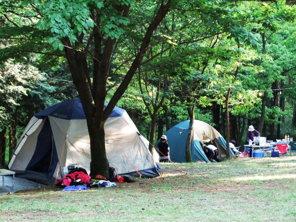 フリーキャンプサイト